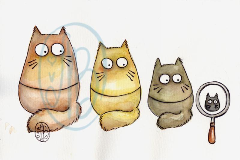 POOKIE - cat-roskas