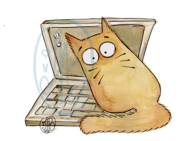 POOKIE - lap-cat-top