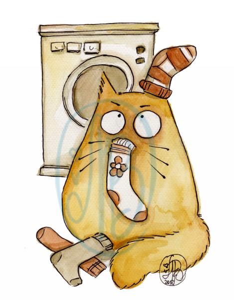 POOKIE - sock-cat