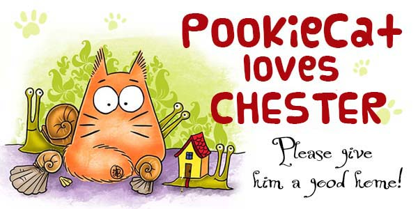 Pookiecat-loves